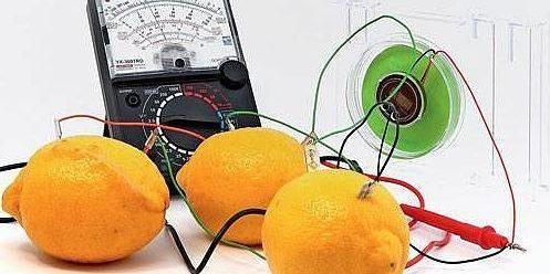 Fruit Battery (ফল ব্যাটারি)